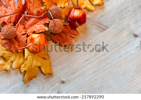 Autumn Leaves and Chinese Lanterns on Wooden Surface with Copyspace as seen from Above