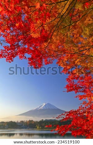 Autumn Leaves and Mount Fuji - stock photo