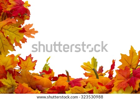 Autumn Leaves and Pumpkins Background, Autumn Leaves and Pumpkins isolated on white with space for your message - stock photo