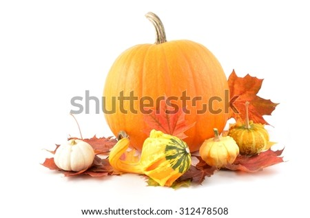 Autumn Leaves and Pumpkins isolated on white background.