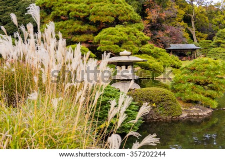Autumn leaves and silver grass.Japanese garden with lantern. - stock photo