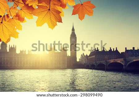 autumn leaves and Westminster, London, UK  - stock photo