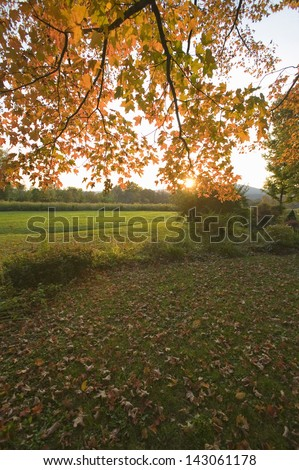 Autumn leaves at sunset in Litchfield Hills of Connecticut - stock photo