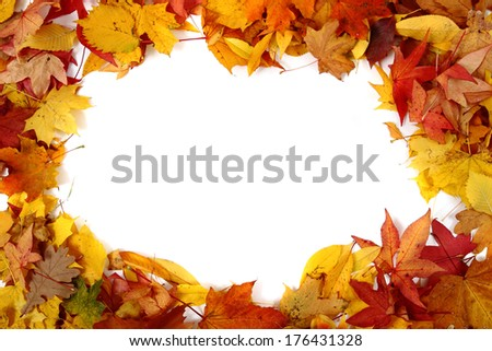 autumn leaves background (frame) - stock photo
