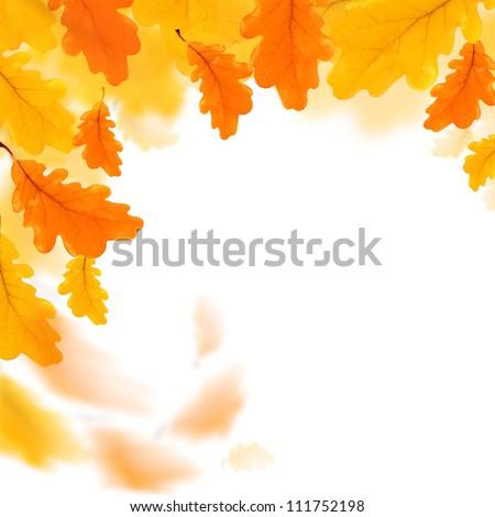Autumn leaves border isolated over white - stock photo
