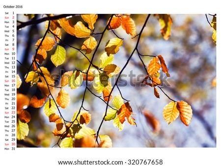 Autumn Leaves, 2016 calendar, october