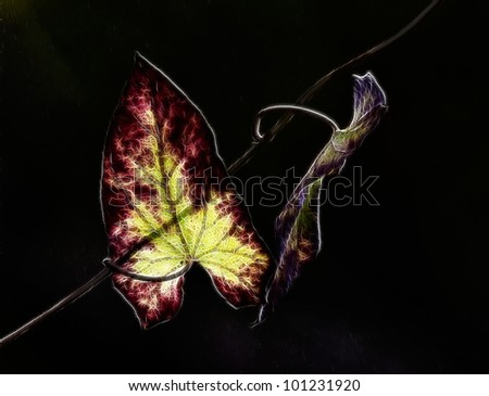 Autumn leaves emphasizing the light through the leaves - stock photo