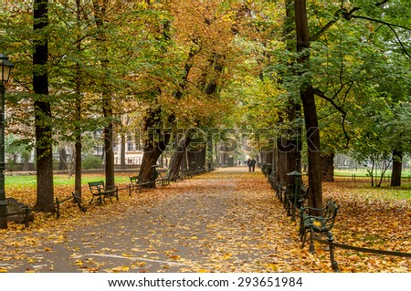 Autumn leaves falling in The Planty - a park in Krakow, Poland. - stock photo