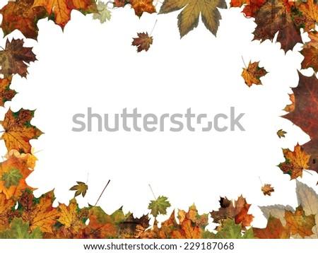 autumn leaves frame border illustration isolated on whit - stock photo