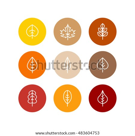 Autumn leaves icons set, fall tree colorful foliage