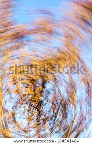 Autumn leaves in radial motion
