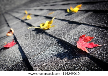 Autumn leaves on a roof - stock photo