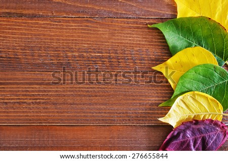 autumn leaves on the wooden background,yellow leaves and wooden boards - stock photo