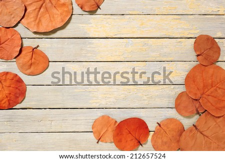 autumn leaves on white wooden board - stock photo