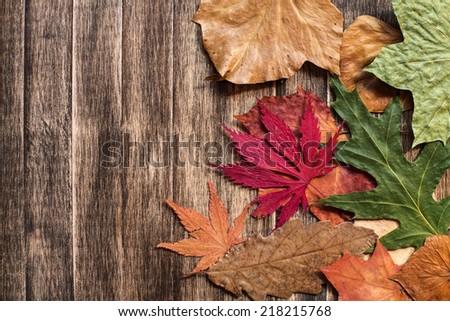 Autumn leaves on wooden background./ Autumn leaves on wooden background.  - stock photo