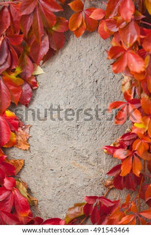 Autumn leaves over stone wall background with copy space