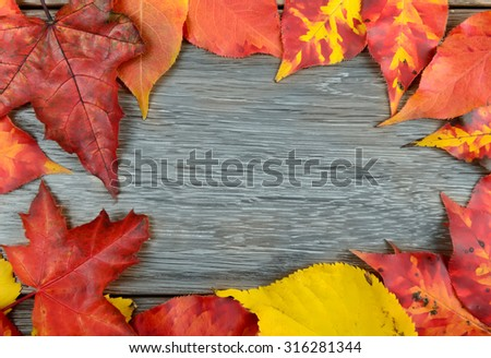 Autumn leaves over wooden background with copy space - stock photo