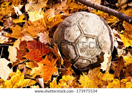 autumn leaves surrounds an old ball in the woods - stock photo