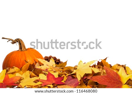 Autumn leaves with pumpkin - stock photo