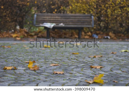 Autumn leaves with wooden park bench in background - stock photo