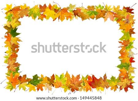 Autumn maple leaves falling frame, isolated on white background. - stock photo