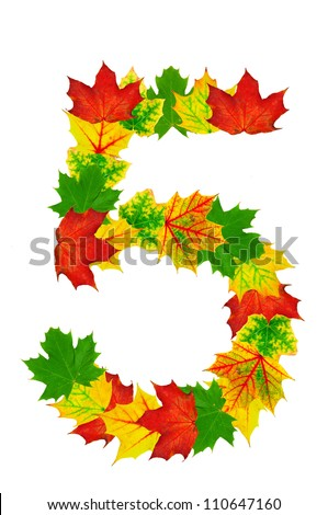 Autumn maple Leaves in the shape of number 5 isolated on white