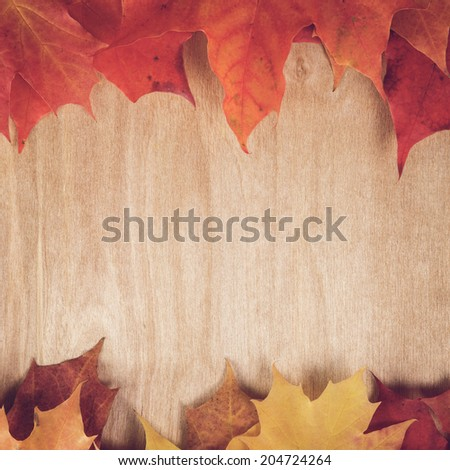 autumn maple leaves on wood table, fall season background - stock photo