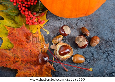 Autumn maple leaves with pumpkin and chestnuts  - stock photo