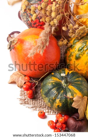 Autumn mini pumpkins and berries over white