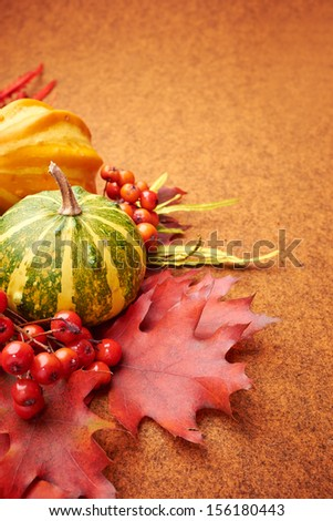 Autumn mini pumpkins, berries, chestnuts and dry flowers over orange  background