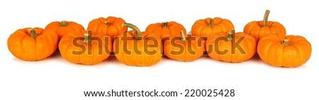 Autumn mini pumpkins forming a border over a white background - stock photo