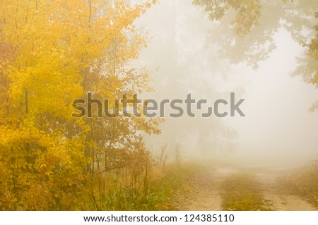 Autumn mist - stock photo