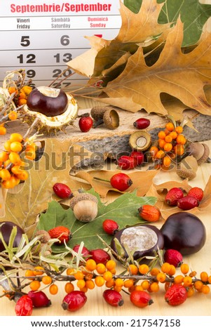 Autumn months September calendar with brown acorns,  chestnuts, rosehip, seabuckthorn, autumn leaves, on wooden background - stock photo
