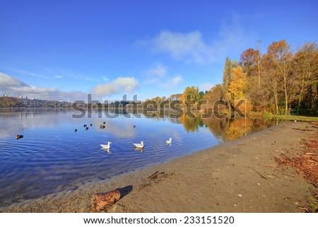 Autumn morning view of Deer Lake beach, Burnaby, British Columbia, Canada - stock photo