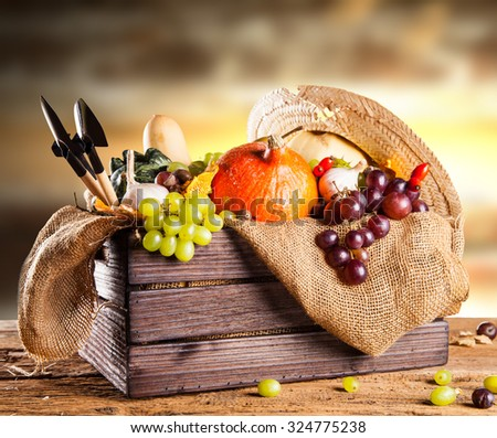 Autumn nature concept. Fall fruit and vegetables on wooden table