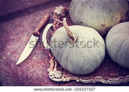 Autumn nature concept. Fall pumpkins on wooden rustic table. Thanksgiving dinner