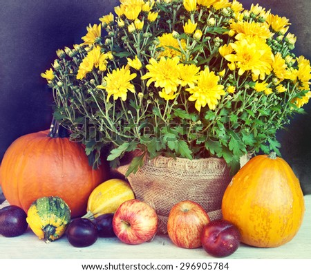 Autumn nature concept. Fruit and vegetables on wood. Thanksgiving dinner. - stock photo