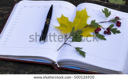 autumn. Notebook with yellow leaves and red berries . top view