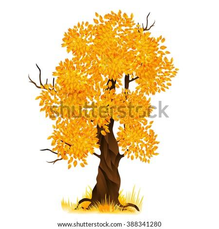 Autumn old tree isolated on white. Cartoon fall tree - stock photo