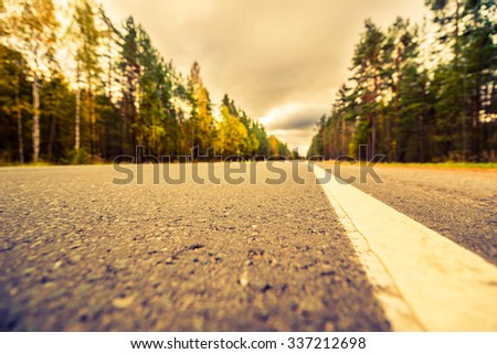 Autumn on the country road, yellowed foliage of trees near the roadside. View from the level of the dividing line, image in the yellow-blue toning - stock photo