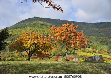 Autumn on the southern wine road of Germany Palatinate