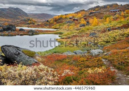 Autumn on Unna Allakas in northern Sweden - stock photo