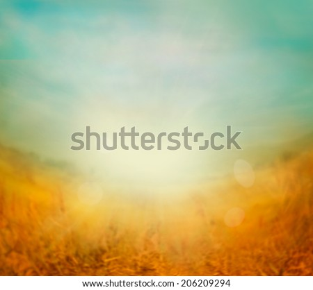 Autumn or summer abstract nature background with blue sky in the back. Summer or autumn sunset - stock photo