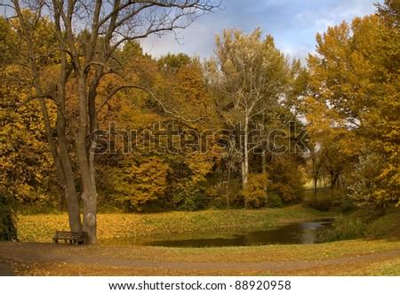 Autumn park - stock photo