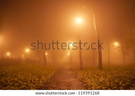 Autumn Park at night in the fog