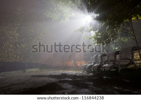 Autumn park in the evening - stock photo