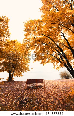 autumn park landscape - stock photo