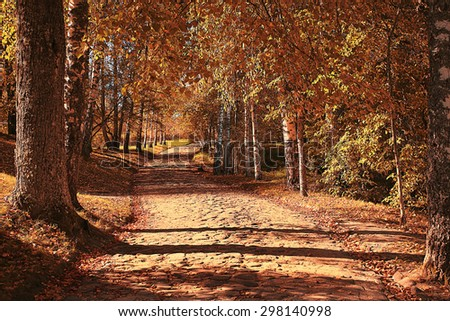 autumn park landscape with trees with yellow foliage - stock photo
