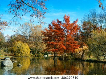 Autumn Park. Trees reflected in the water of the lake in the park - stock photo