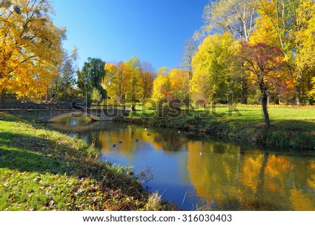 Autumn park with colorful trees reflected in river. Some ducks on the water. Tranquil scenery in sunny day
